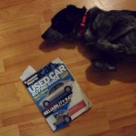 Maya ate the library's copy of Consumer Reports Auto Guide 2011