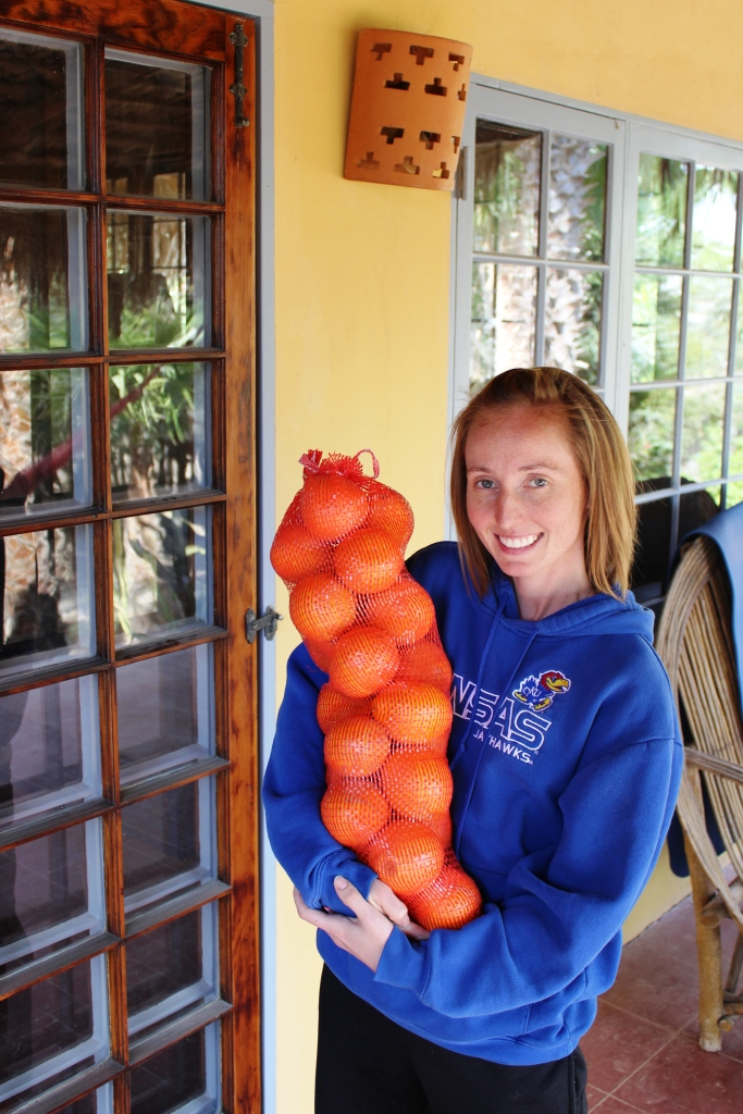 Local San Juanico Oranges