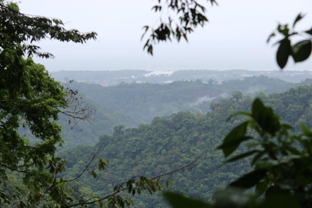 Overlooking La Ceiba from Pico Bonito, Honduras