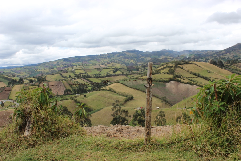 Ecuadorian Countryside