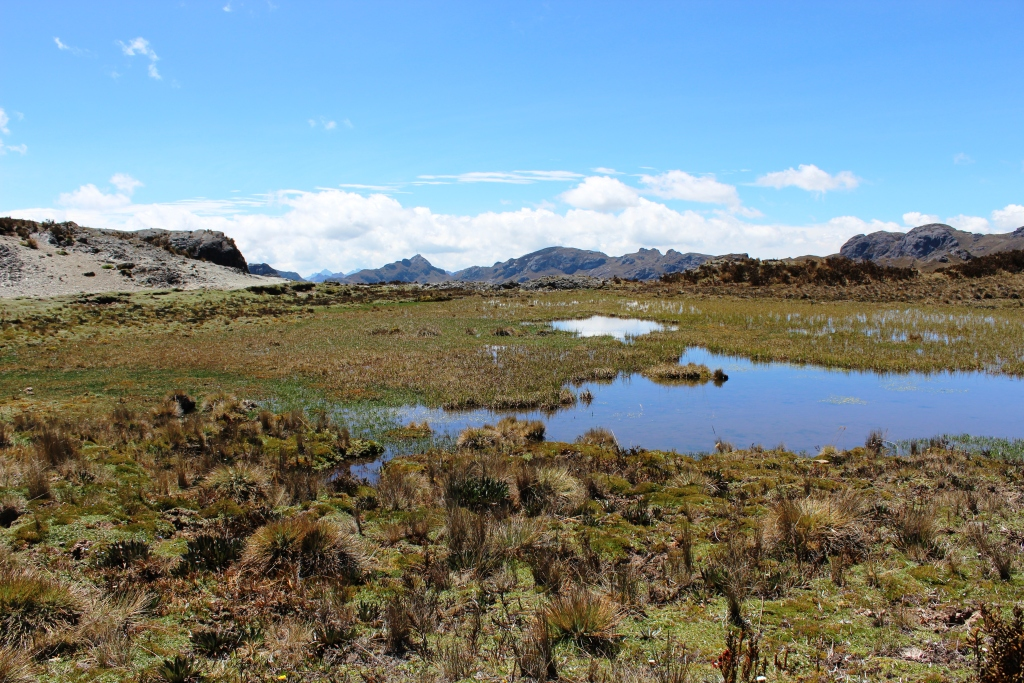 El Cajas National Park in Ecuador