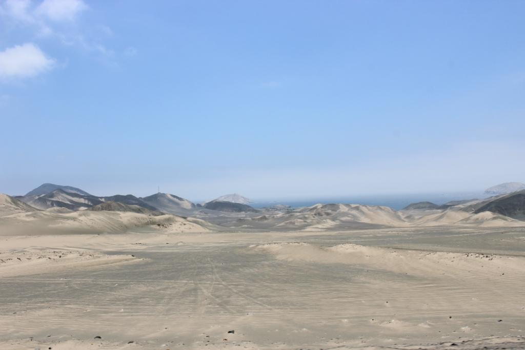 Beach Desert