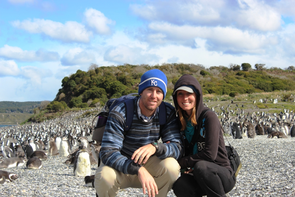 Love and Penguins