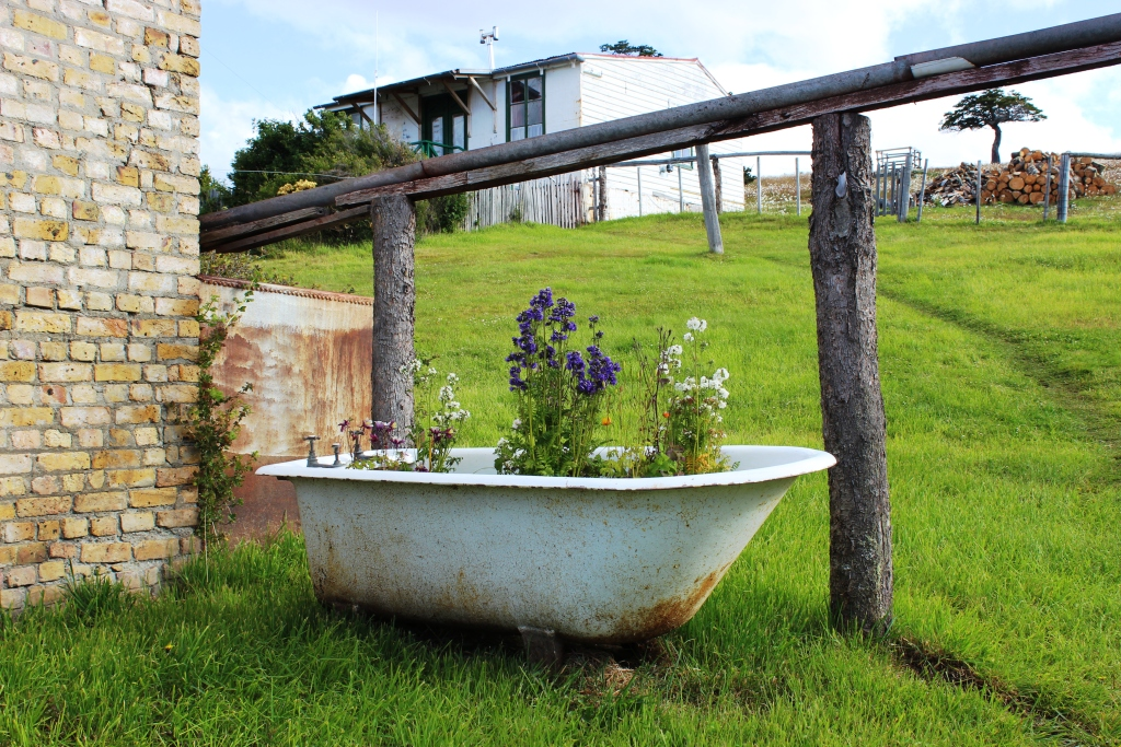 Bathtub Planter at Estancia Harberton