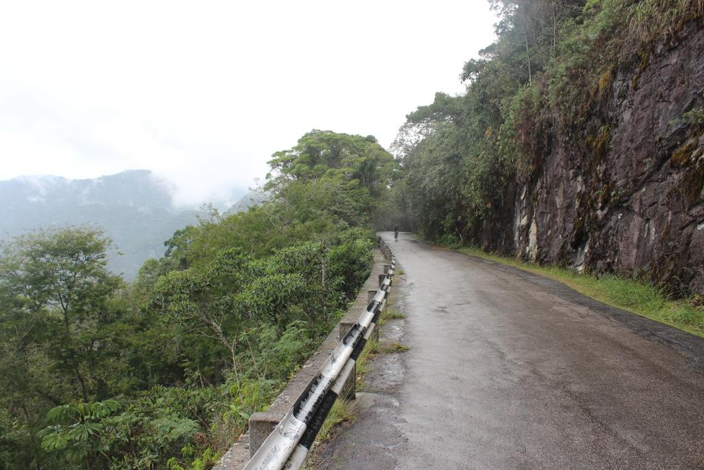Inside Tijuca